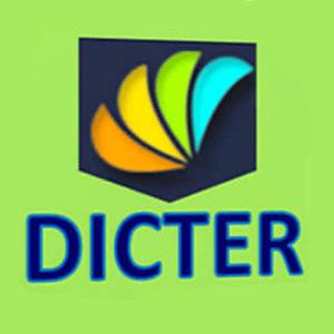 Dicter не переводит